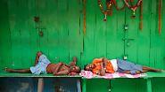 Ohne geht es nicht: Schlaf - ein lebenswichtiger Trieb