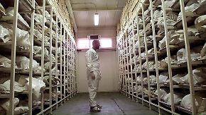 n-tv 1995: Das Massaker von Srebrenica