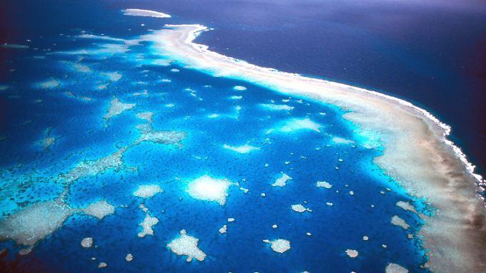 Besonders am 2600 Kilometer langen Great Barrier Reef vor der Ostküste wird das Schutzgebiet massiv ausgeweitet.