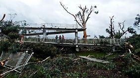 Entwurzelte Bäume und abgetrennte Geländer sind die Zeugnisse des schweren Unwetters.