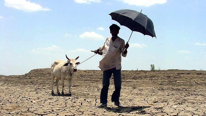 Laut Weltbank befindet sich die Welt auf dem Weg in Richtung einer vier Grad wärmeren Welt.
