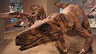 Eine Welt der Superlative: Die Dinosaurier