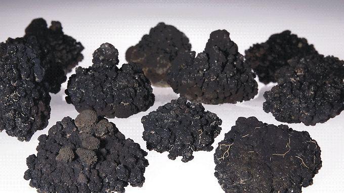 Manganknollen enthalten Mangan, Kupfer, Nickel und Kobalt.