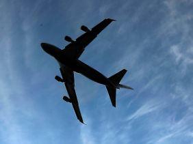 """""""Das ist sehr gefährlich"""": Piloten warnen vor den Folgen von Asche in der Luft."""