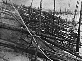 Umgeknickte Bäume in Sibirien. Das dort 1908 eingeschlagene Geschoss war achtmal kleiner als 2005 YU55.