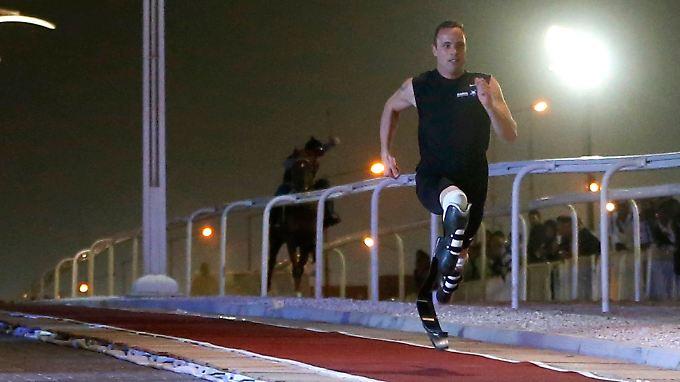Da staunt das Pferd in Doha.