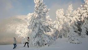 Der Osten Europas versinkt dieser Tage im Schnee.