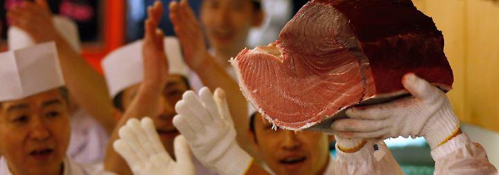 ... das butterzart ist, fein und aromatisch schmeckt und sich deshalb vorzüglich für Sushi eignet.