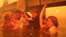 Panik und Angst: Die australische Familie Holmes aus dem Ort Dunalley verschanzt sich unter einem Steg im Wasser.