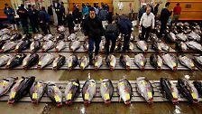 20 Billionen Yen für die Wirtschaft: Japan schaltet Turbo ein