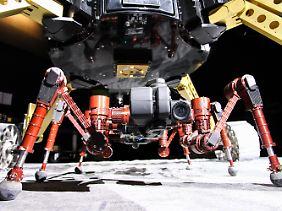 Die Roboter wurden in einer künstlichen Mondlandschaft getestet.