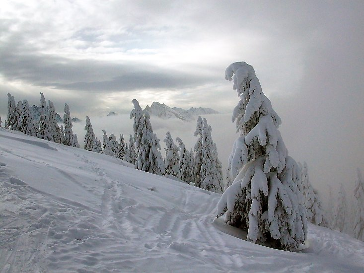 ... des Winterwunderlandes, das ...
