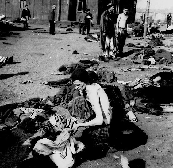 thesis of the holocaust The holocaust clearly had the most damaging effects on the human mind in history in 1945, the holocaust ended many people thought that the liberation of the camps and ghettos would solve all their problems.