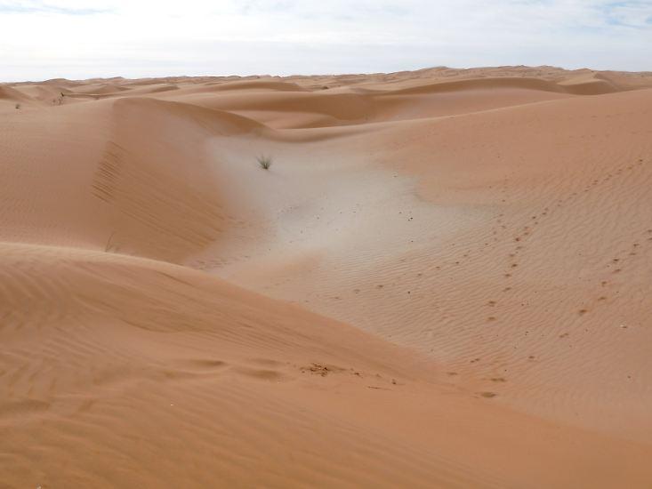 Sand, so weit das Auge reicht, ...