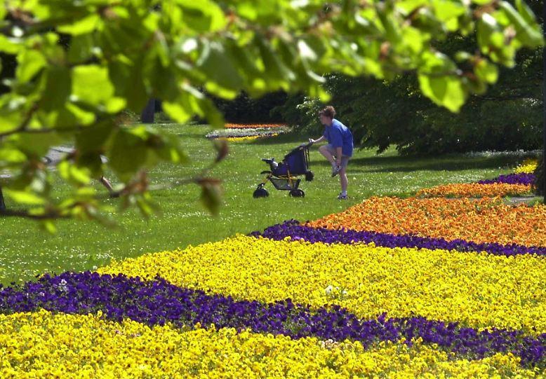 Eigentlich sollte der Wonnemonat Mai mit Sonnenstrahlen verwöhnen. Doch in diesem Jahr kommt es anders.