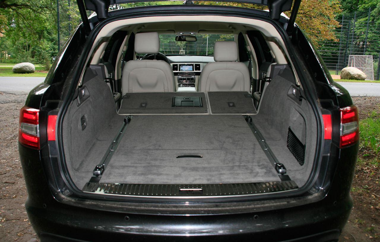 Katze und Lastesel  geht das? Jaguar XF Sportbrake