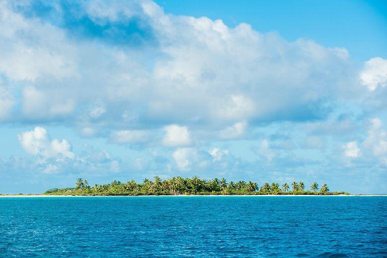 Eine Insel, irgendwo in der Südsee. Oh ja, ...