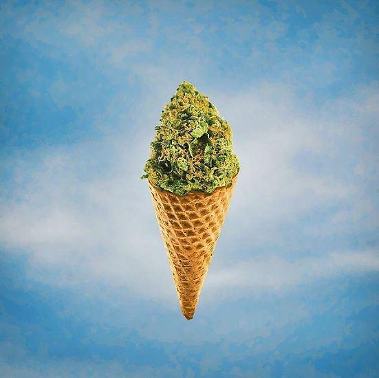 Gras kann man rauchen. Aber man kann ...