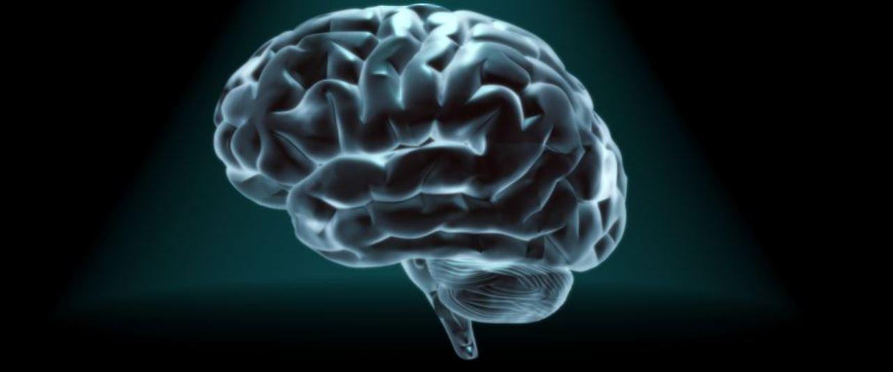 Persönlichkeitsmerkmale einzigartig: Hirn hinterlässt Fingerabdruck ...