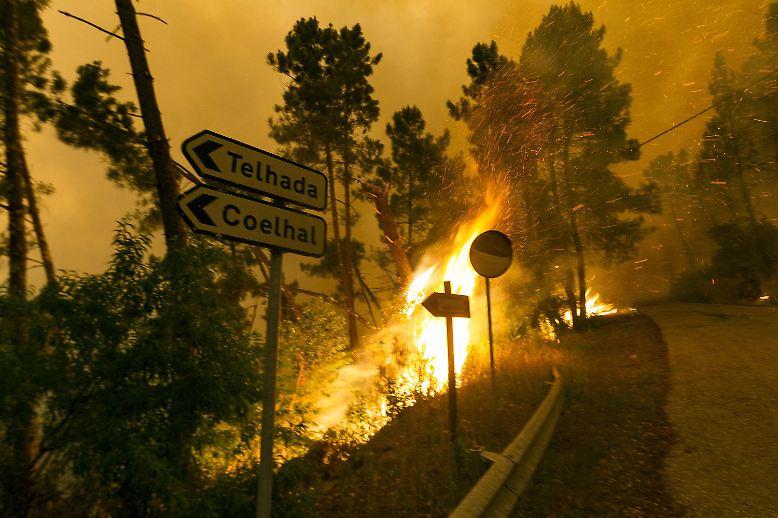 Ein gewaltiges Feuer macht das Naturparadies Pedrógão Grande in Portugal praktisch dem Erdboden gleich.