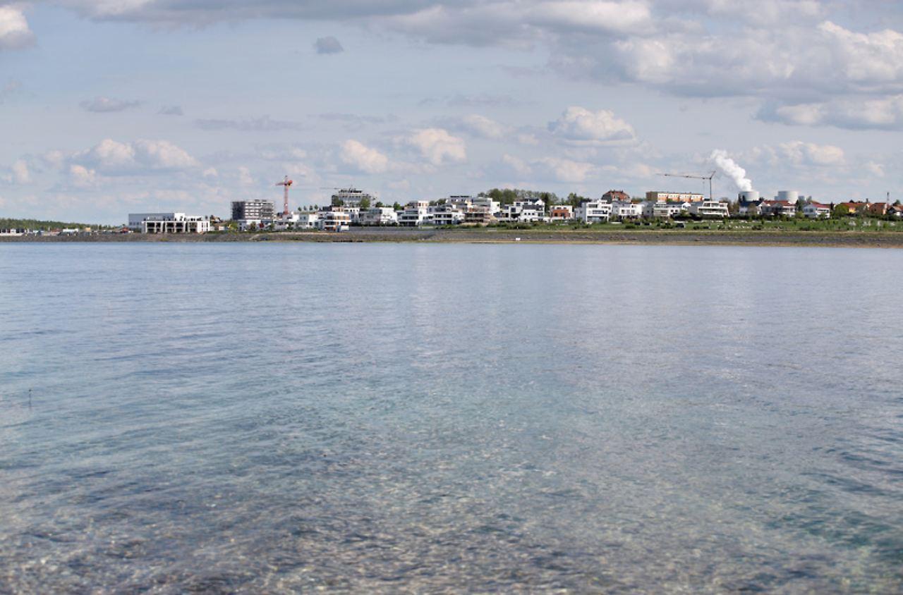 Leben erobert saure Gewässer: Wie wird Tagebauloch zu bewohntem See ...