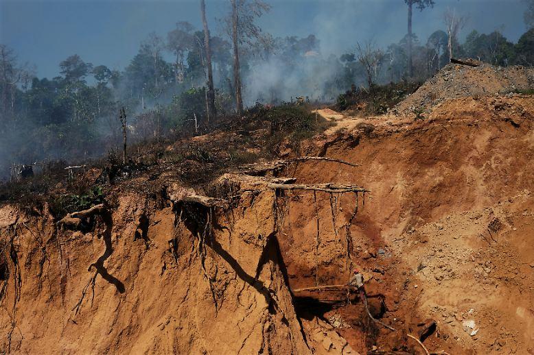 Tief sind die Gräben, die die Goldgräber am Rande des Amazonas in die Erde geschlagen haben.