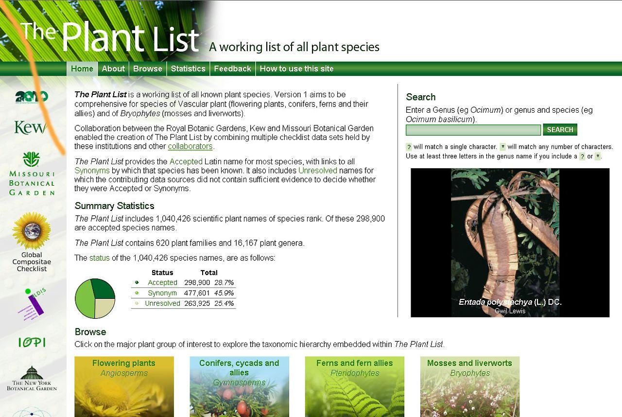 Alle Pflanzen Sind Im Internet Auf Www.theplantlist.de Aufgelistet.