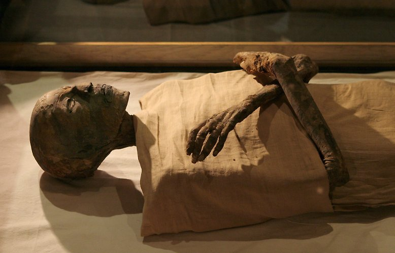 mediathek bilderserien wissen mumien koerper trotzen verfall article