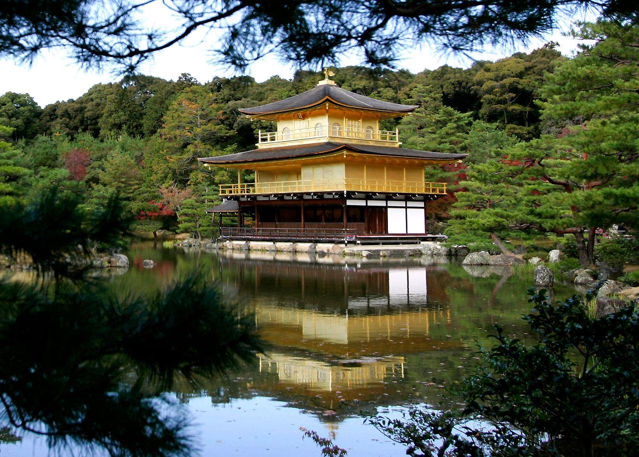 araiguma rasukaru ist schuld waschb r plage in japan. Black Bedroom Furniture Sets. Home Design Ideas